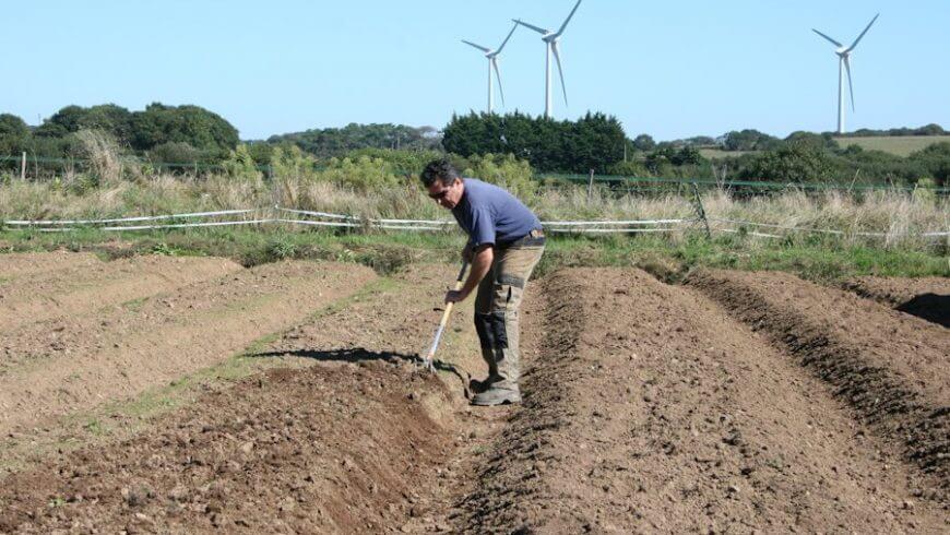 Fins prêts pour la récolte 2013