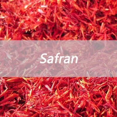 cultures de safran aloe vera et arborescens curcuma bretagne. Black Bedroom Furniture Sets. Home Design Ideas
